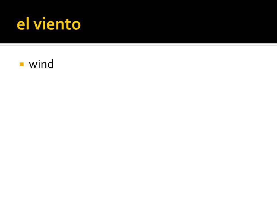  wind