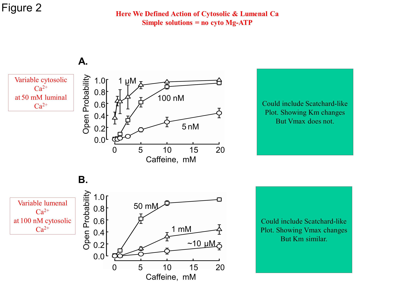 Figure 2 Open Probability 1 µM 5 Caffeine, mM Open Probability 0.6 0.8 1.0 02010 0.4 0.2 0.0 15 A. 100 nM 5 nM ~10 µM 1 mM 50 mM B. 0.6 0.8 1.0 0.4 0.