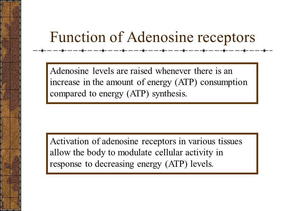 Function of Adenosine receptors Adenosine levels are raised whenever there is an increase in the amount of energy (ATP) consumption compared to energy (ATP) synthesis.