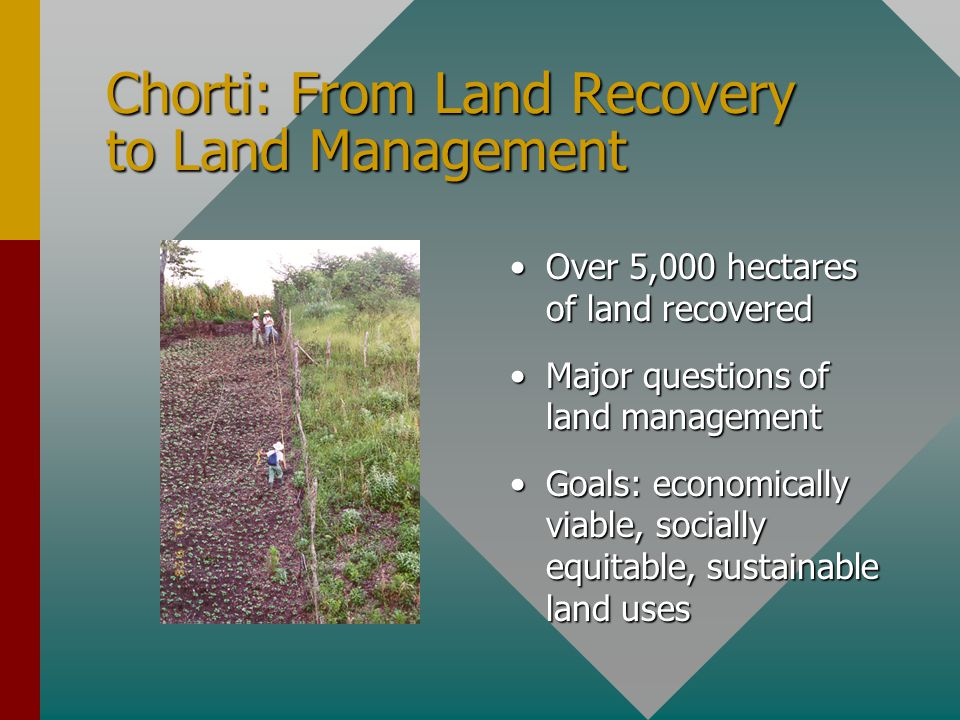 Chorti: From Land Recovery to Land Management Over 5,000 hectares of land recovered Major questions of land management Goals: economically viable, socially equitable, sustainable land uses
