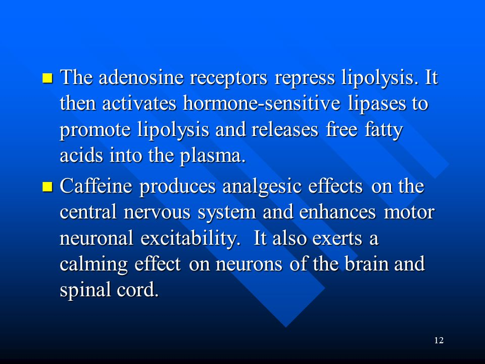 12 The adenosine receptors repress lipolysis.