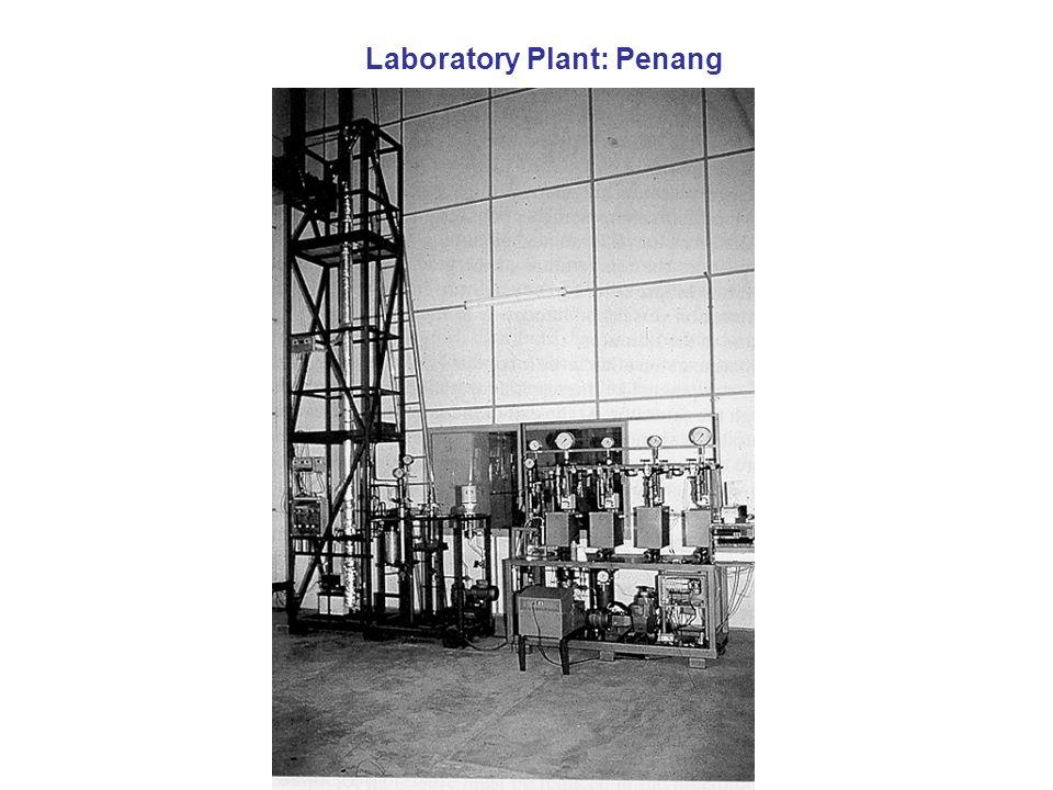 Laboratory Plant: Penang