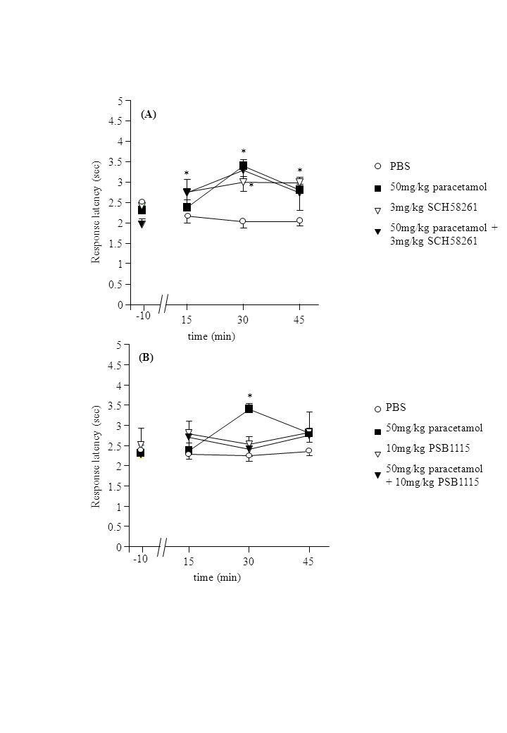 PBS 50mg/kg paracetamol 3mg/kg SCH58261 50mg/kg paracetamol + 3mg/kg SCH58261