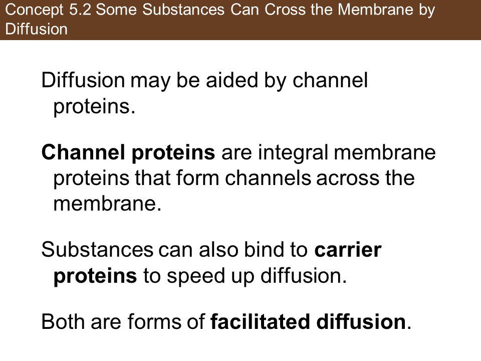 Concept 5.2 Some Substances Can Cross the Membrane by Diffusion Diffusion may be aided by channel proteins. Channel proteins are integral membrane pro