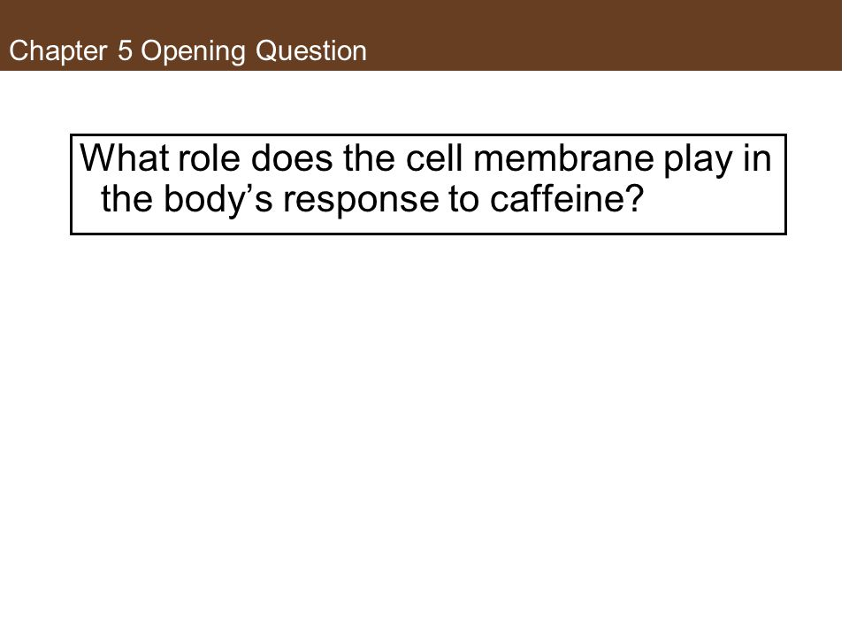 Concept 5.1 Biological Membranes Have a Common Structure and Are Fluid A membrane's structure and functions are determined by its constituents: lipids, proteins, and carbohydrates.