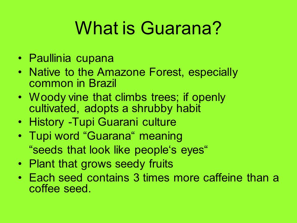 What is Guarana? Paullinia cupana Native to the Amazone Forest, especially common in Brazil Woody vine that climbs trees; if openly cultivated, adopts