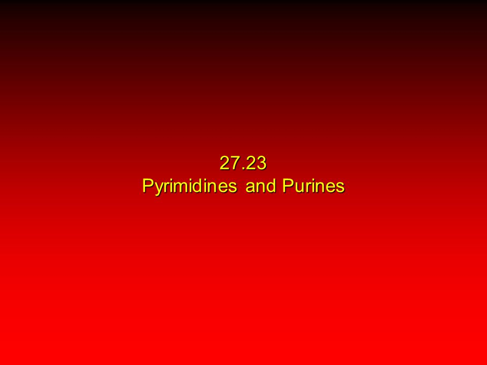 27.23 Pyrimidines and Purines