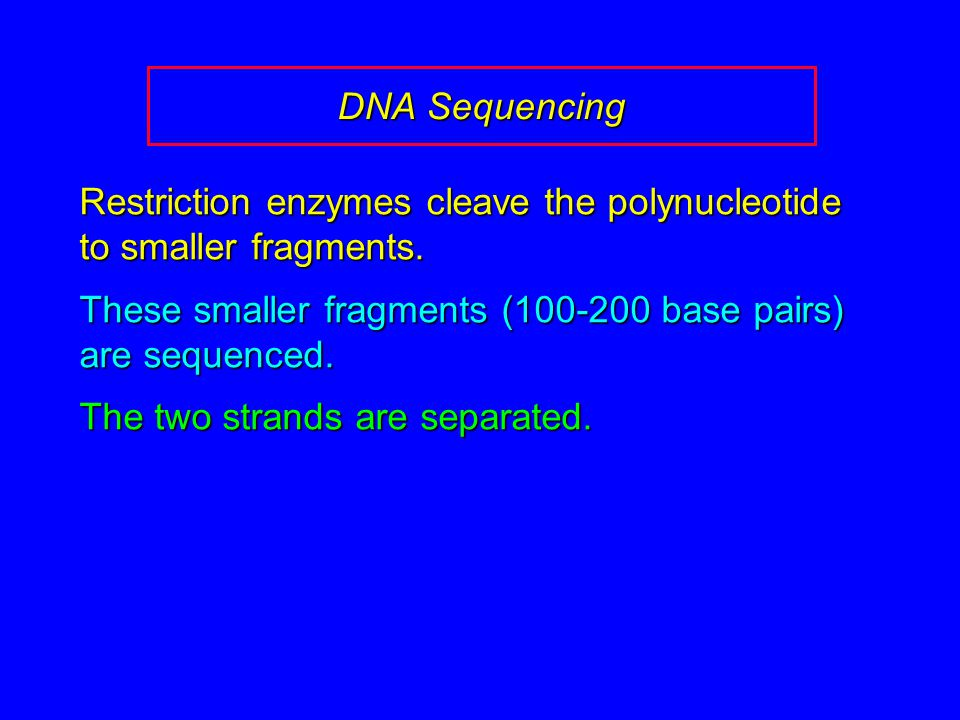 DNA Sequencing Restriction enzymes cleave the polynucleotide to smaller fragments.