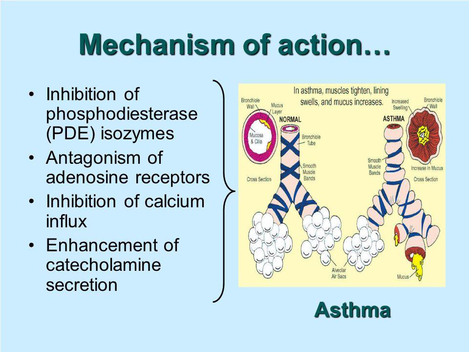 Inhibition of phosphodiesterase (PDE) isozymes Antagonism of adenosine receptors Inhibition of calcium influx Enhancement of catecholamine secretion A