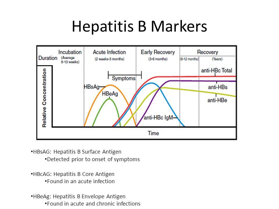 Hepatitis B Markers HBsAG: Hepatitis B Surface Antigen Detected prior to onset of symptoms HBcAG: Hepatitis B Core Antigen Found in an acute infection