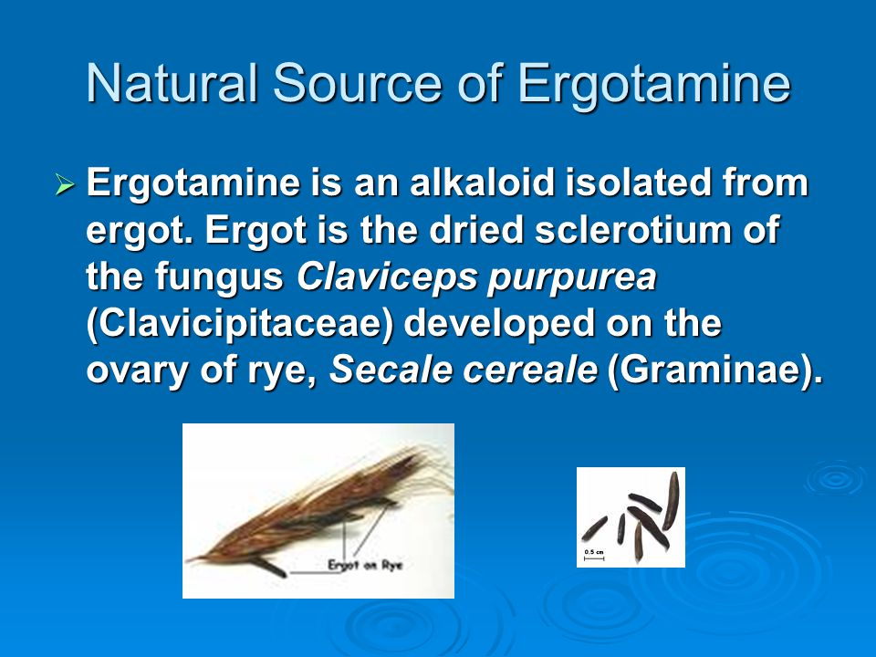 Natural Source of Ergotamine  Ergotamine is an alkaloid isolated from ergot.