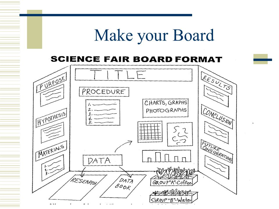 Make Your Board  Start your information on the top left panel of the board, move down the left panel, across the middle panel, and from the top down