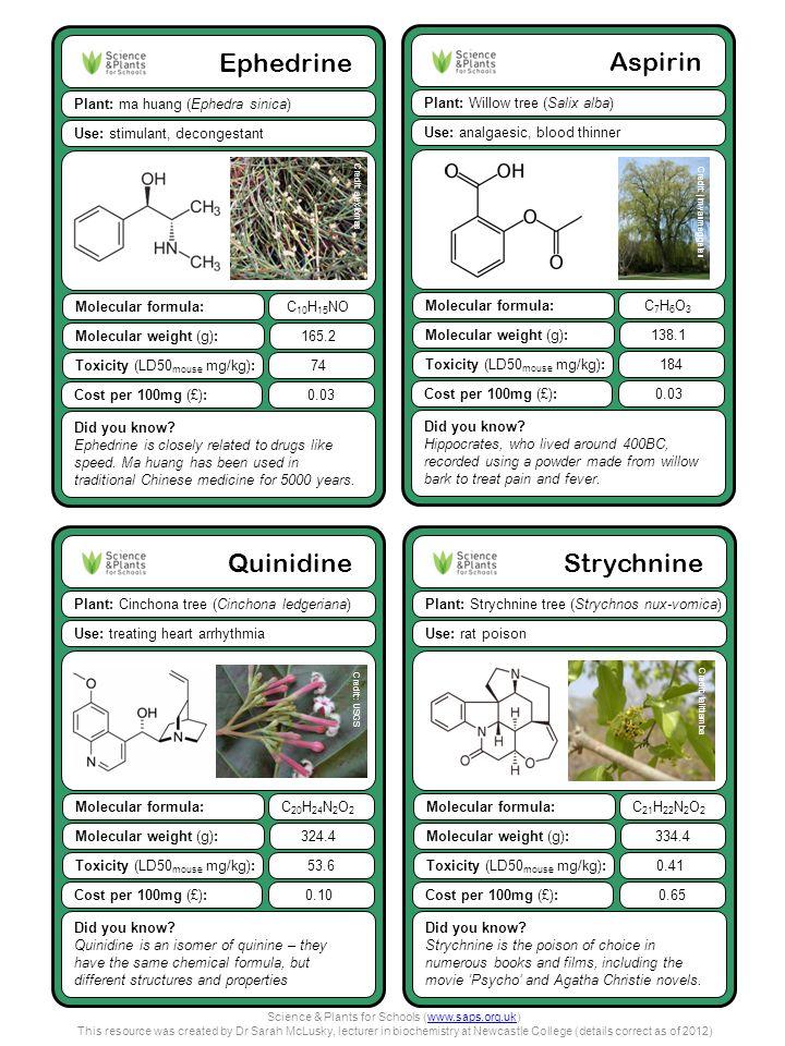 Quinidine Plant: Cinchona tree (Cinchona ledgeriana) Did you know.