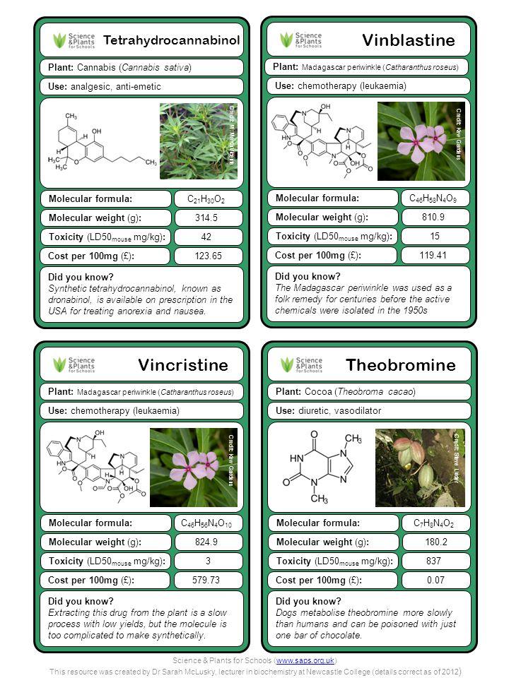 Tetrahydrocannabinol Plant: Cannabis (Cannabis sativa) Did you know? Synthetic tetrahydrocannabinol, known as dronabinol, is available on prescription