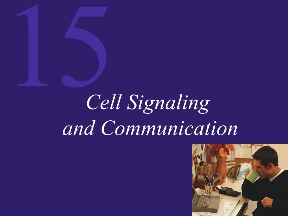 15 Signals An example using…………………………… E.coli.