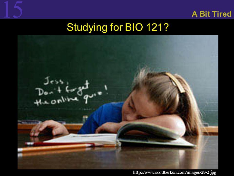 15 A Bit Tired Studying for BIO 121? http://www.scottberkun.com/images/29-2.jpg