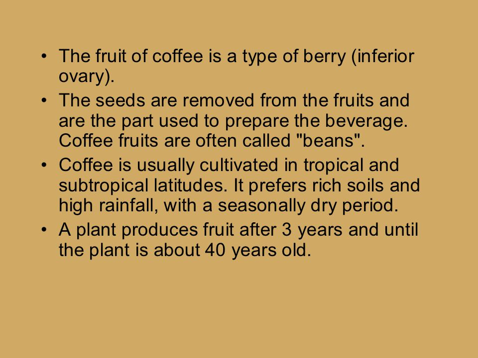 The fruit of coffee is a type of berry (inferior ovary).
