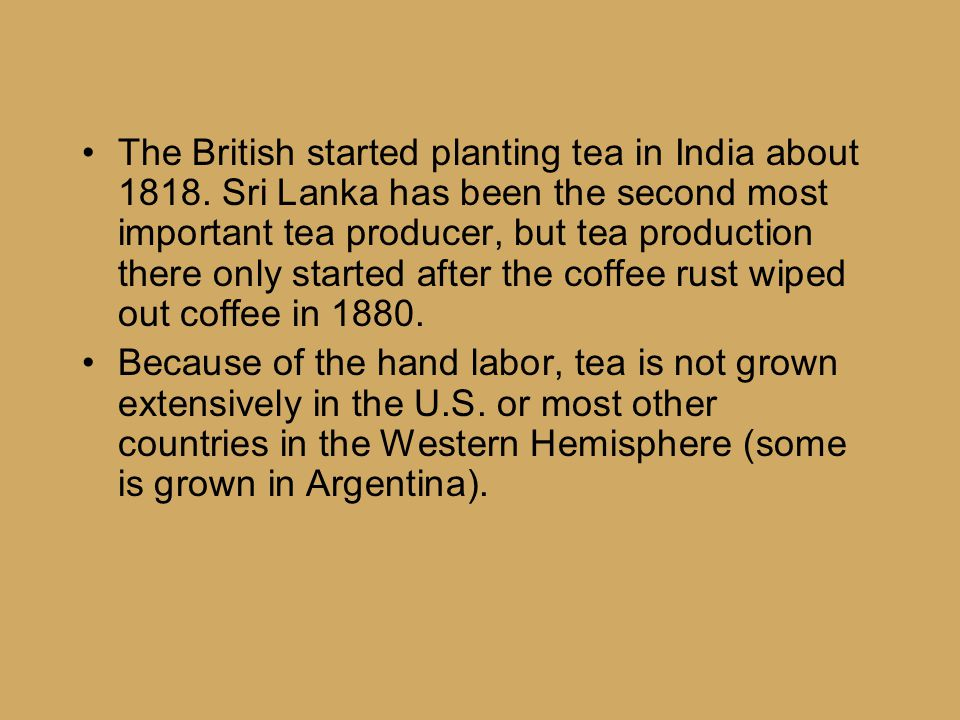 The British started planting tea in India about 1818.