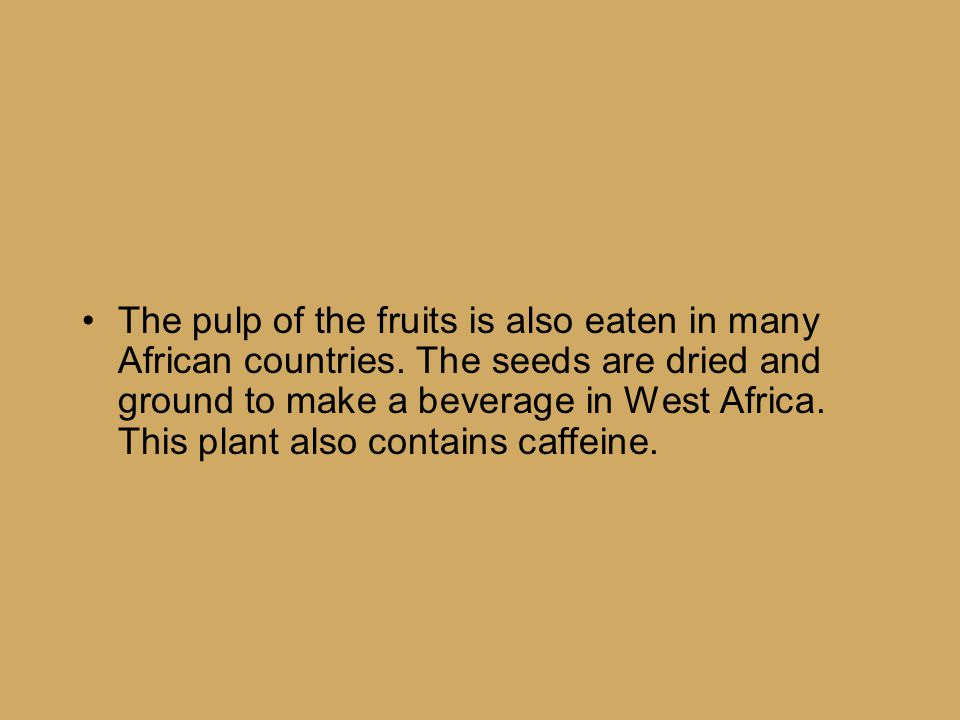 The pulp of the fruits is also eaten in many African countries.
