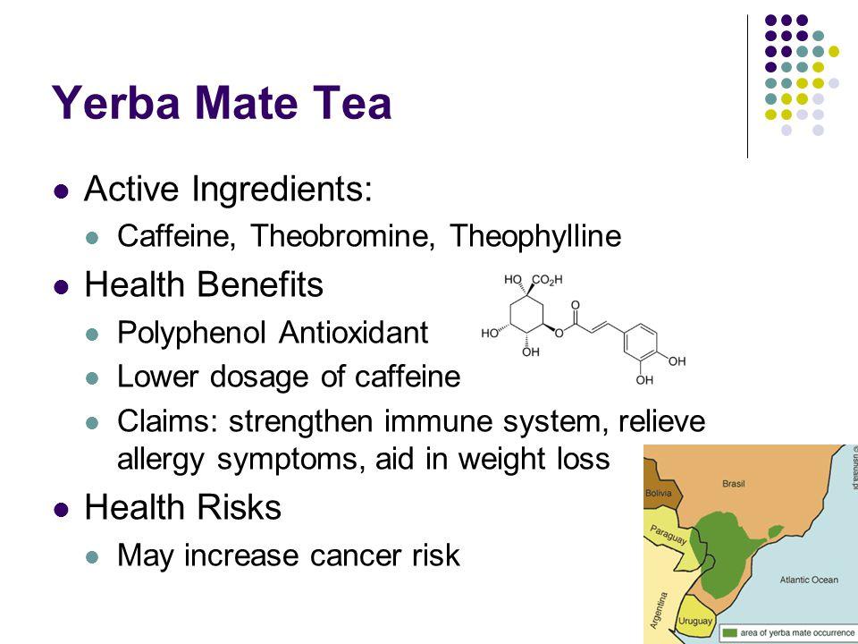Yerba Mate Tea Active Ingredients: Caffeine, Theobromine, Theophylline Health Benefits Polyphenol Antioxidant Lower dosage of caffeine Claims: strengt