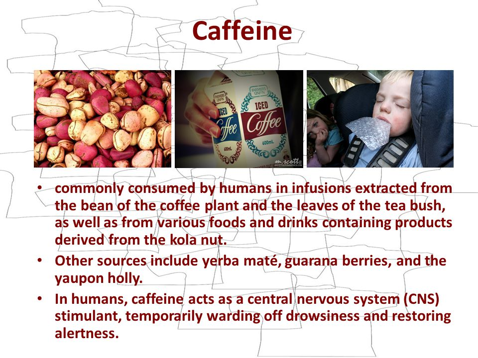 Caffeine commonly consumed by humans in infusions extracted from the bean of the coffee plant and the leaves of the tea bush, as well as from various foods and drinks containing products derived from the kola nut.