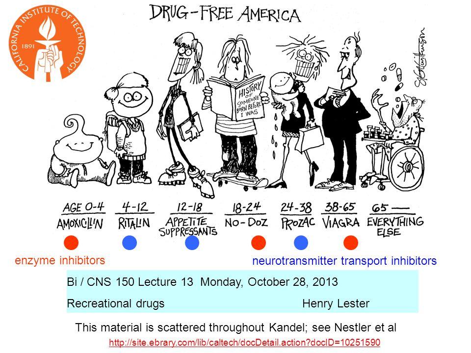 22 Only a few thousand neurons in the brain make noradrenaline Nestler Figure 6-7
