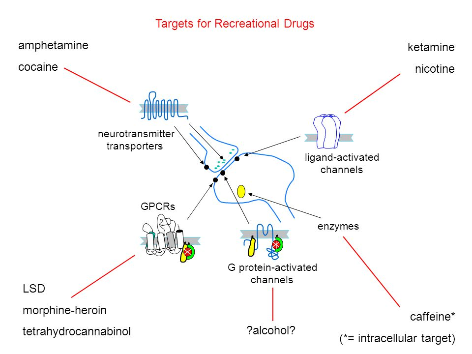 Recreational usePrescription use* Non-prescription ( over the counter ) use morphine-heroinIllegal Schedule II pain control Weaker analogs: cough & diarrhea tetrahydrocannabinol 28.5 g, (CO, WA); > 21; taxed 20 states incl.