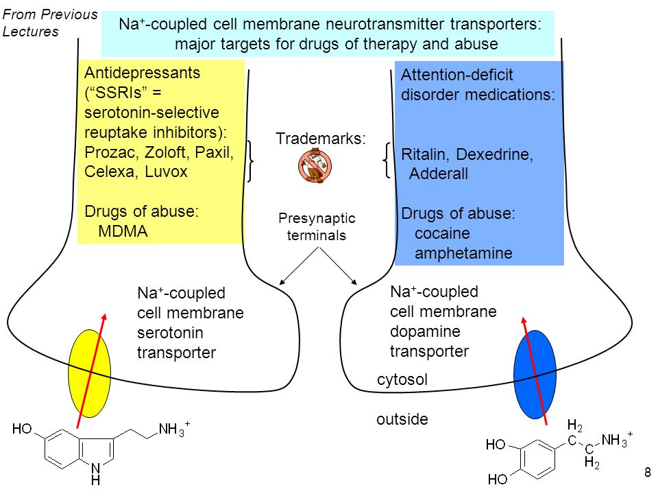 Endogenous ligand morphine-heroinagonistendorphins (peptides) THCagonistanandamide nicotineagonistacetylcholine cocaineantagonistdopamine amphetamine & derivatives antagonist, false substrate noradrenaline, serotonin, dopamine ethanolagonist?G protein.