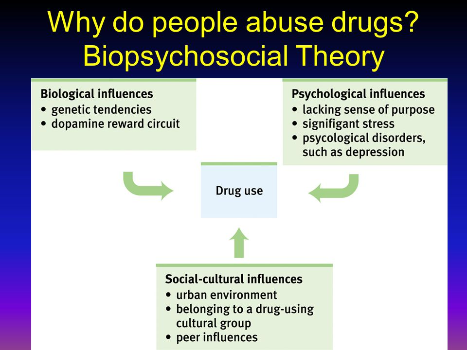 Why do people abuse drugs? Biopsychosocial Theory