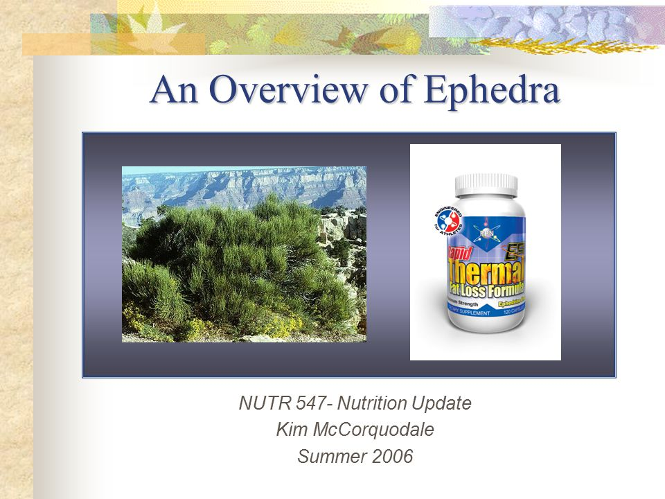 NUTR 547- Nutrition Update Kim McCorquodale Summer 2006 An Overview of Ephedra