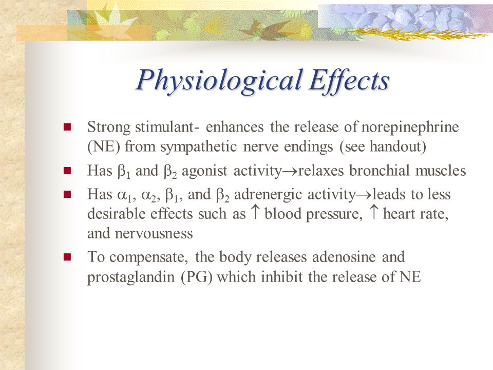 Physiological Effects Strong stimulant- enhances the release of norepinephrine (NE) from sympathetic nerve endings (see handout) Has  1 and  2 agonist activity  relaxes bronchial muscles Has  1,  2,  1, and  2 adrenergic activity  leads to less desirable effects such as  blood pressure,  heart rate, and nervousness To compensate, the body releases adenosine and prostaglandin (PG) which inhibit the release of NE