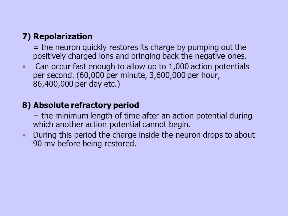 7) Repolarization = the neuron quickly restores its charge by pumping out the positively charged ions and bringing back the negative ones. Can occur f