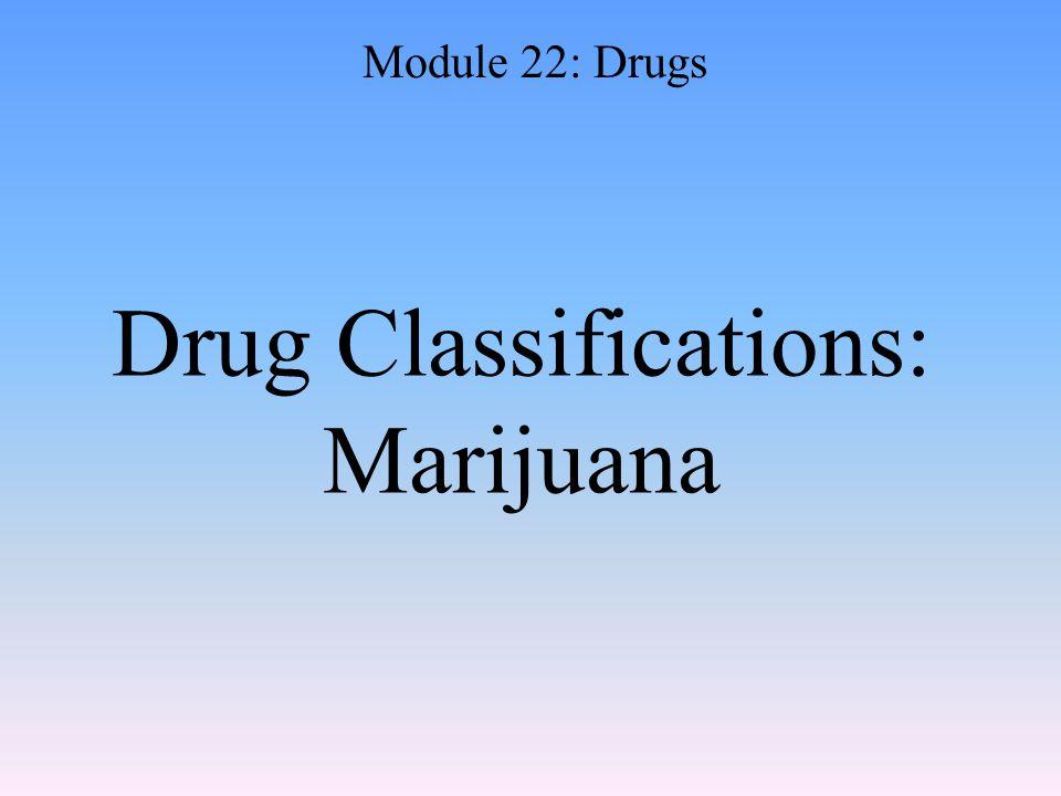 Drug Classifications: Marijuana Module 22: Drugs