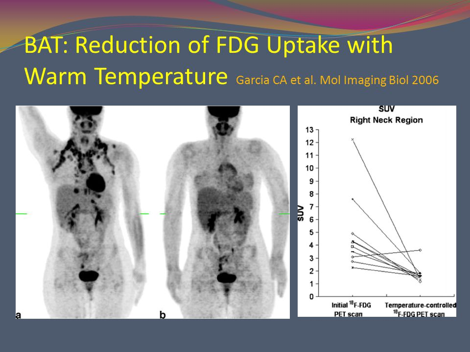 BAT: Reduction of FDG Uptake with Warm Temperature Garcia CA et al. Mol Imaging Biol 2006