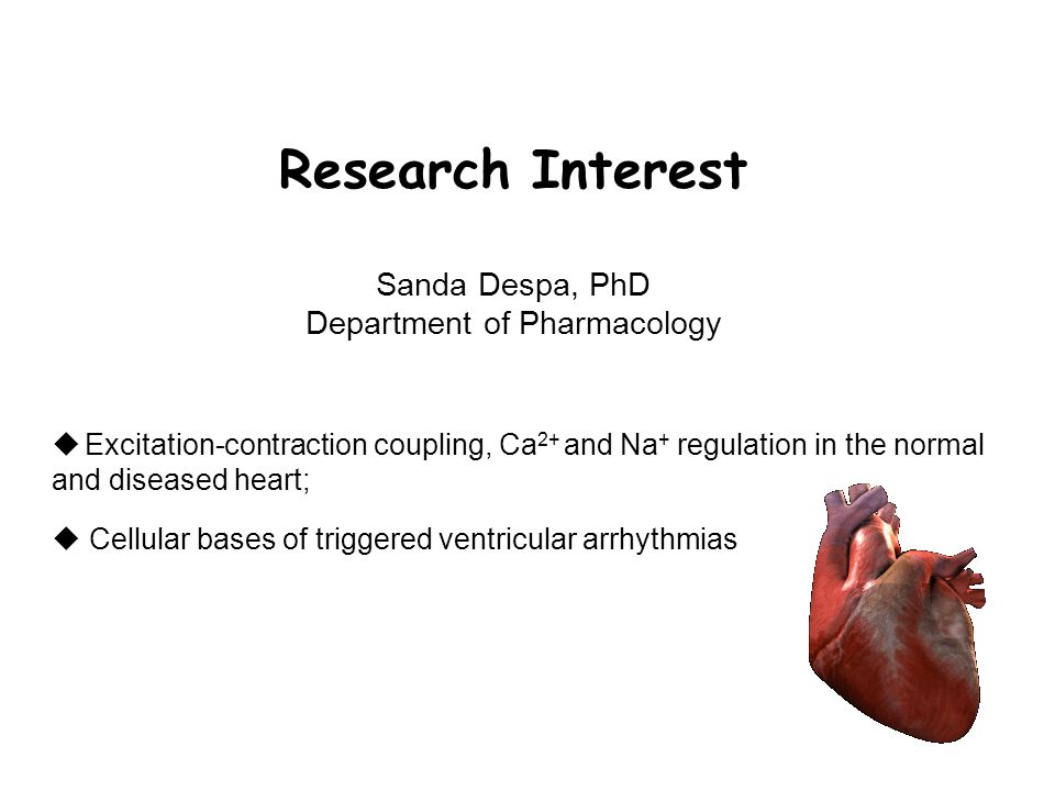  Excitation-contraction coupling, Ca 2+ and Na + regulation in the normal and diseased heart;  Cellular bases of triggered ventricular arrhythmias Research Interest Sanda Despa, PhD Department of Pharmacology