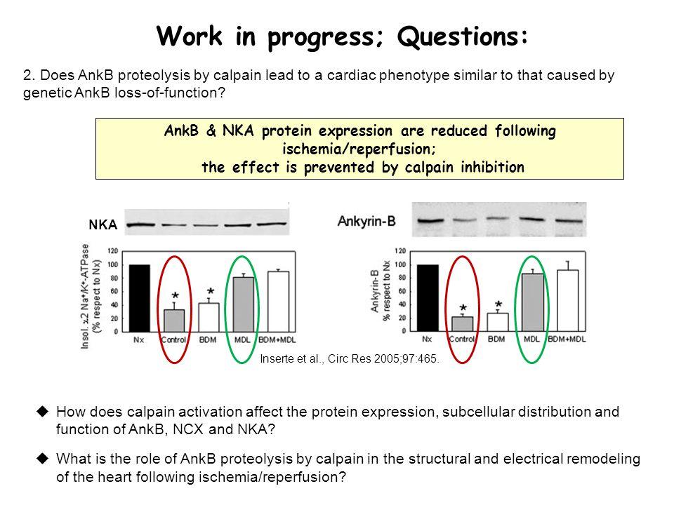 Work in progress; Questions: 2.