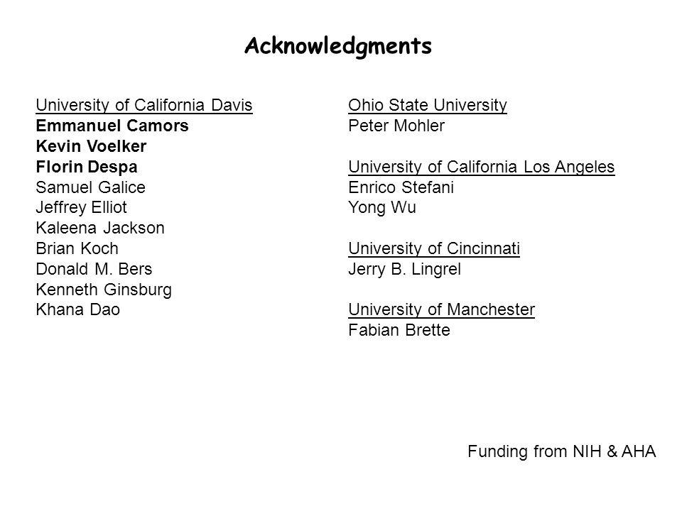 Acknowledgments University of California Davis Emmanuel Camors Kevin Voelker Florin Despa Samuel Galice Jeffrey Elliot Kaleena Jackson Brian Koch Donald M.