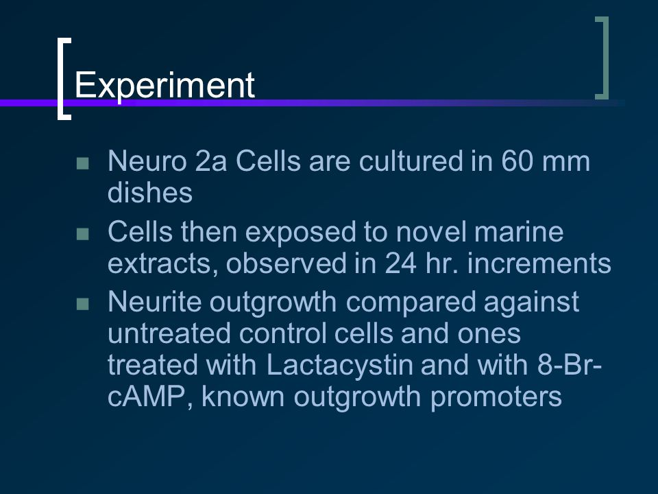 Experiment Neuro 2a Cells are cultured in 60 mm dishes Cells then exposed to novel marine extracts, observed in 24 hr.