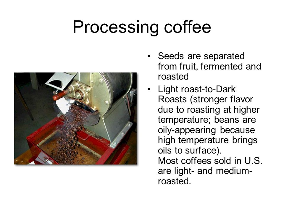 Processing coffee Seeds are separated from fruit, fermented and roasted Light roast-to-Dark Roasts (stronger flavor due to roasting at higher temperature; beans are oily-appearing because high temperature brings oils to surface).