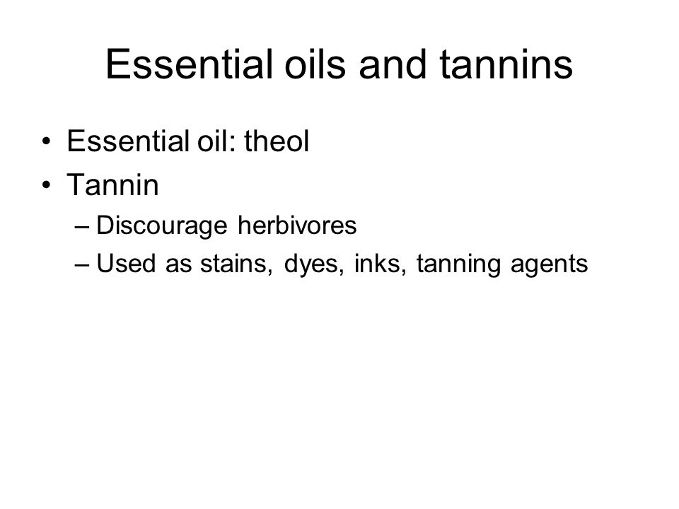 Essential oils and tannins Essential oil: theol Tannin –Discourage herbivores –Used as stains, dyes, inks, tanning agents