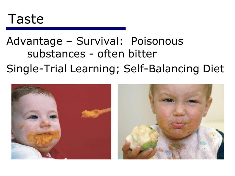Psychology 3554 Taste Advantage – Survival: Poisonous substances - often bitter Single-Trial Learning; Self-Balancing Diet
