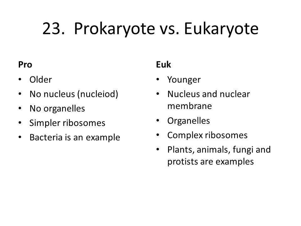 23.Prokaryote vs.
