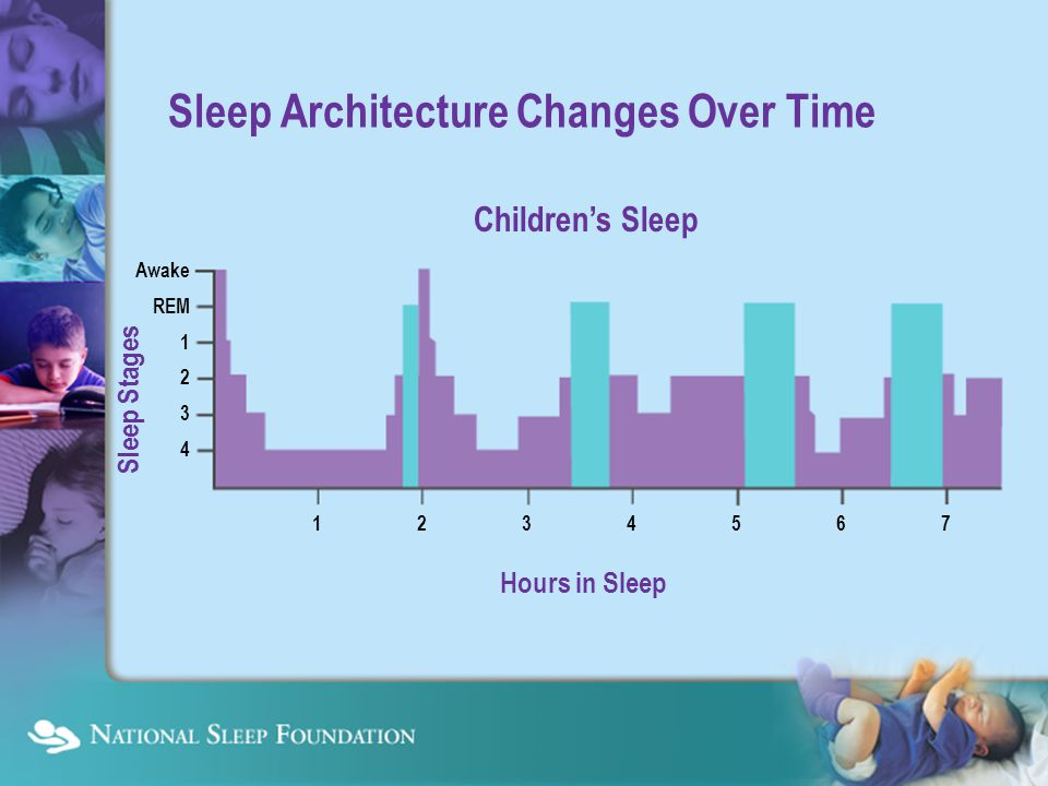 Common Sleep Problems Lead to Serious Consequences Not enough sleep Disruption of sleep (poor sleep) Disruption of sleep (poor sleep) Inappropriate timing of sleep Inappropriate timing of sleep Daytime sleepiness