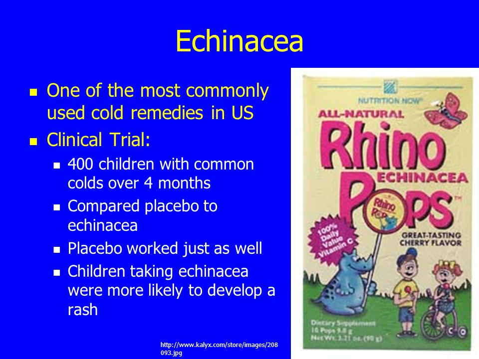 Echinacea One of the most commonly used cold remedies in US Clinical Trial: 400 children with common colds over 4 months Compared placebo to echinacea Placebo worked just as well Children taking echinacea were more likely to develop a rash http://www.kalyx.com/store/images/208 093.jpg
