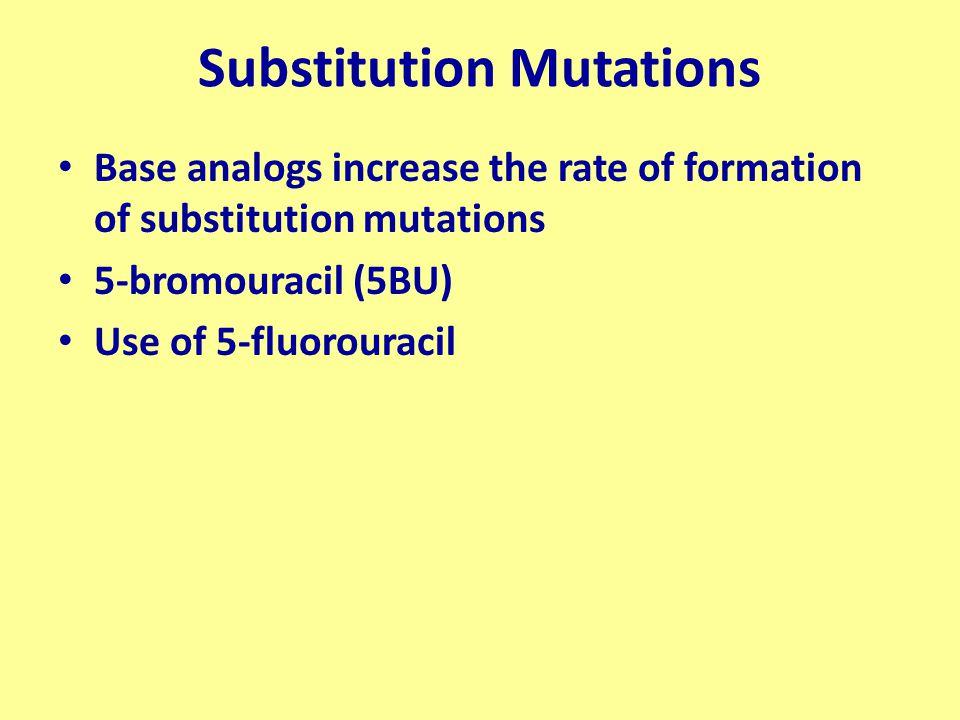 Substitution Mutations Base analogs increase the rate of formation of substitution mutations 5-bromouracil (5BU) Use of 5-fluorouracil
