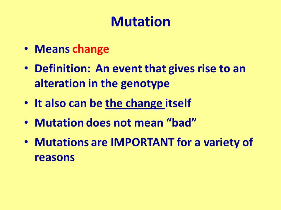 Substitution Mutations Results from a temporary type of isomerization (tautomerization) during replication Base enters a rare state (unstable) Can be in a base already in the DNA strand Can be in one of the incoming bases We will look at both for a TRANSITION Requires two divisions to get the stable mutation