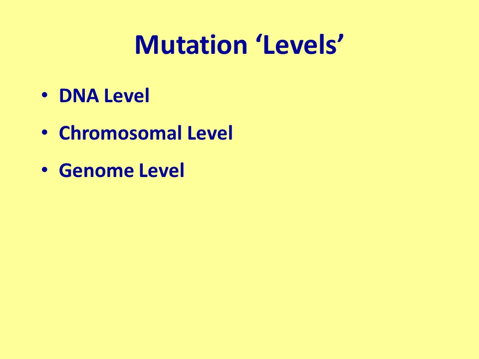 DNA Level At or below the gene level 1 ) Addition or Deletion of one or two nucleotides (+ and – frameshifts) 2) Substitution of one nucleotide for another 3) Inversion within a gene 4) Crossingover within a gene – Equal – Unequal 1 and 2 are often referred to as POINT MUTATIONS