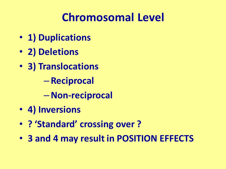 Genome Level These result in ploidy changes Aneuploidy Plus or minus one or a few chromosomes Euploidy (true polyploidy) Involves whole SETS of chromosomes – Autopolyploidy – Allopolyploidy