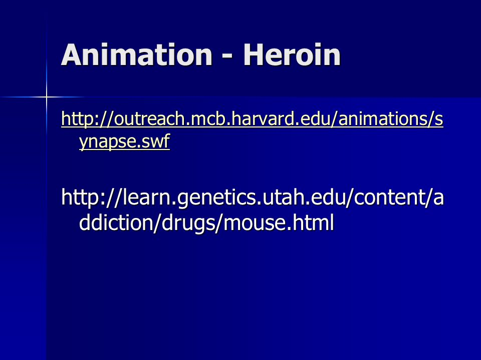 Animation - Heroin http://outreach.mcb.harvard.edu/animations/s ynapse.swf http://outreach.mcb.harvard.edu/animations/s ynapse.swf http://learn.geneti