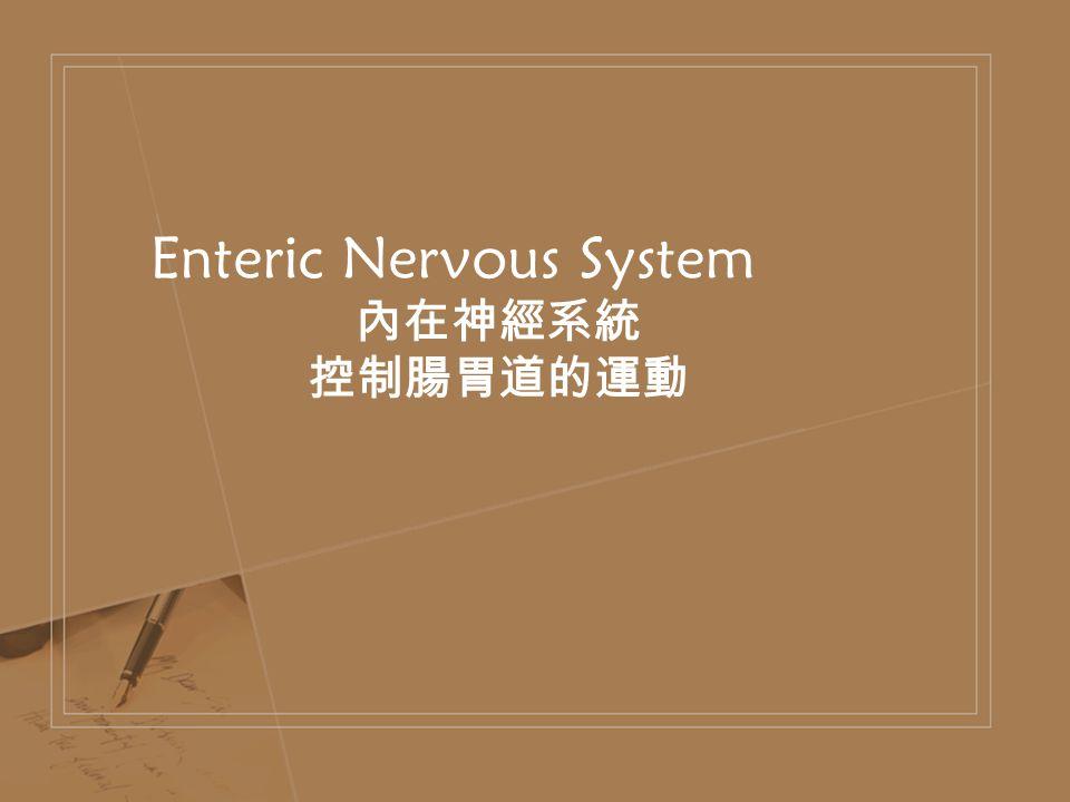 Enteric Nervous System 內在神經系統 控制腸胃道的運動